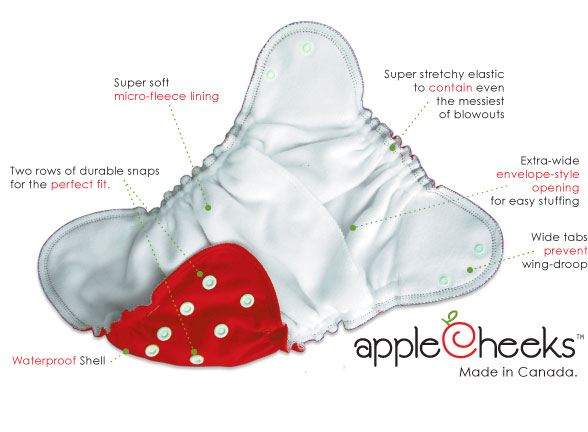 inside AppleCheeks toddler cloth nappy
